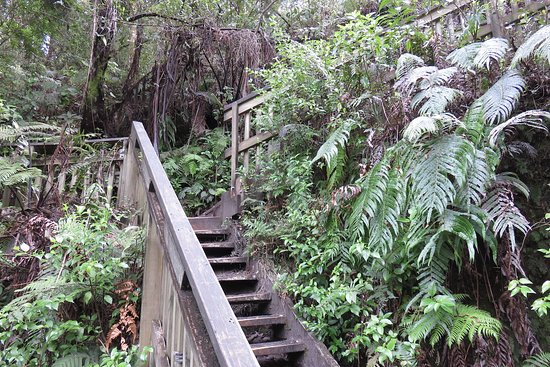 Okere Falls, New Zealand: Optional diversion track with steps