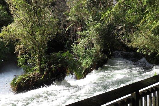 Okere Falls, New Zealand: White water rapids