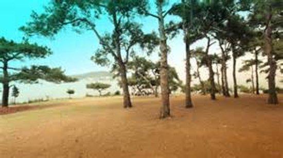 Dilburnu Tabiat Parki