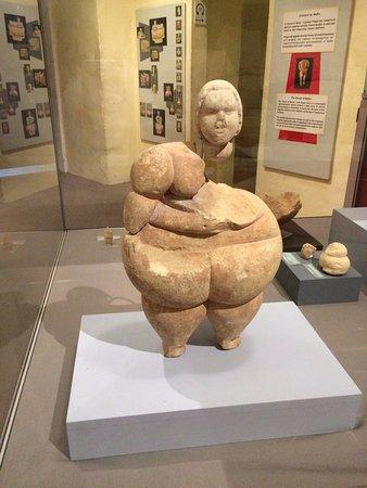 Best of Fat Venus