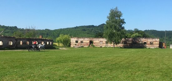 Lipik, Kroatië: trénink