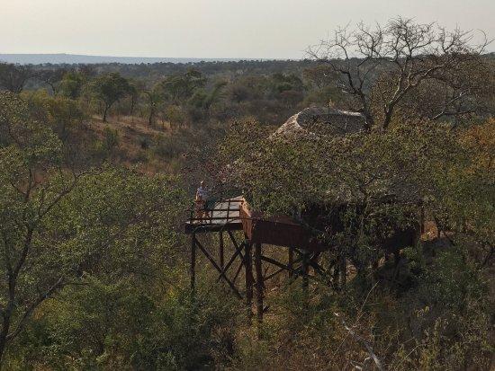 Tarangire Treetops: photo0.jpg