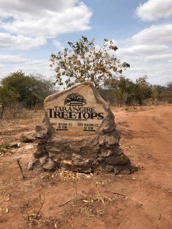 Tarangire Treetops: photo3.jpg