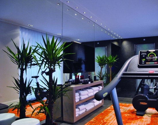 Park Hotel Grenoble - MGallery by Sofitel : Salle de Fitness