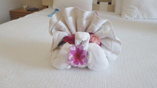 Towel origami picture of jiva beach resort fethiye tripadvisor jiva beach resort towel origami mightylinksfo