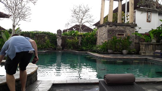 Ubud Bungalow: 20170730_094637_large.jpg