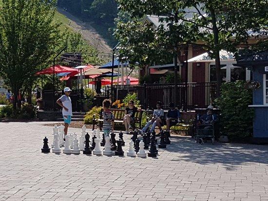Blue Mountain Village: chess
