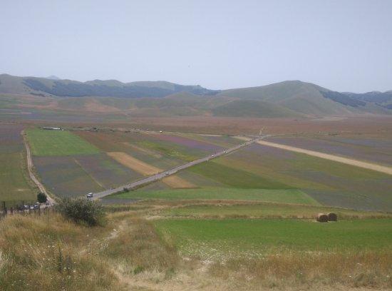 Piana di Castelluccio di Norcia: vista dall'alto