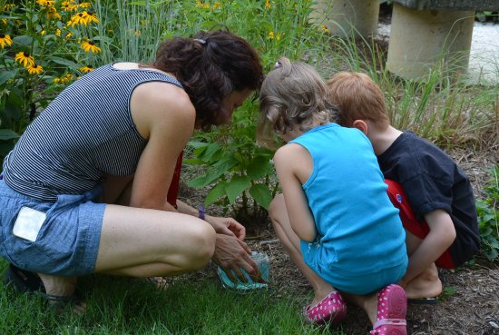 Annmarie Garden: Eco-Exploration Nature programs for families