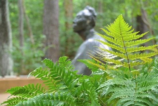 Annmarie Garden: The Women's Walk along the wooded path is a serene experience