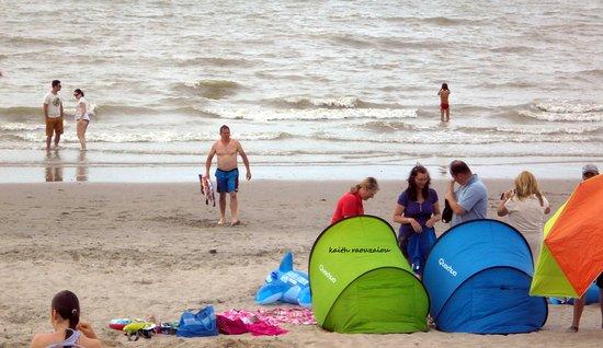 Holanda del Norte, Países Bajos: Ganzdac   Αμμόλοφοι !!  Μια υπέροχη παραλία, καθαρότατη!.τυχερός όποιος απολαύσει και την παλιίρ
