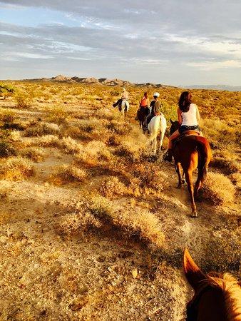 Yucca, AZ: photo2.jpg