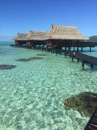 Vahine Island Resort & Spa: Stunning water bungalows