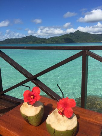 Vahine Island Resort & Spa: Off our water bungalow deck