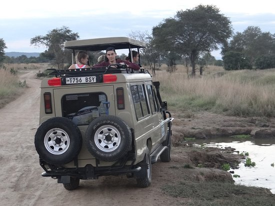 Friends Of Africa Family Safaris Ltd