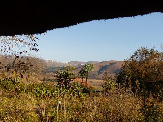 Imagen de Inkosana Lodge