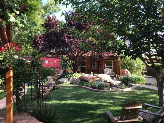 Cali Cochitta Bed & Breakfast: The beautiful backyard scene