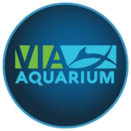 Logo Picture Of Via Aquarium Schenectady Tripadvisor