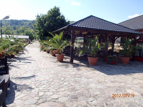 Darmanesti, رومانيا: Außenbereich mit Palmen
