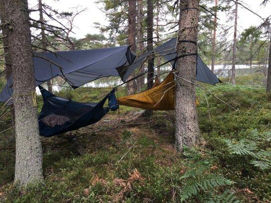 Ramkvilla, Sverige: photo0.jpg
