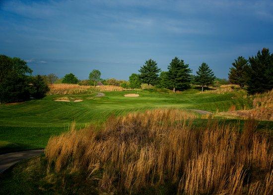 Waterloo, IL: Hole #4 - Par 3 - 174 yards