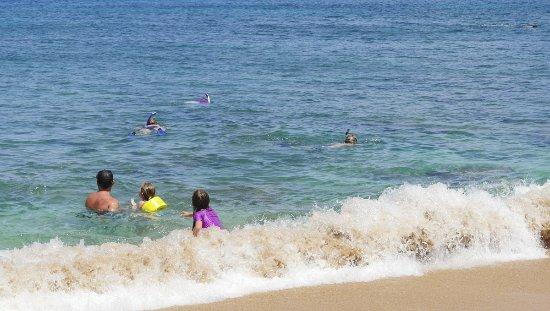 Kahekili Beach Park: Excellent snorkeling close to shore