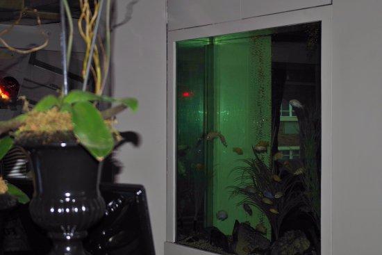 岩礁飯店照片