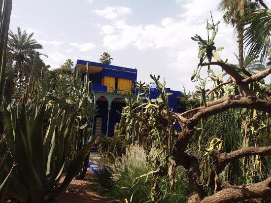 Jardin Majorelle Marrakech Picture Of Turismo Marruecos