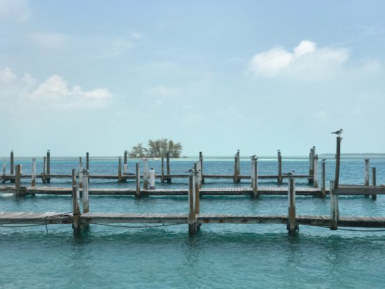 Bimini: The marina view