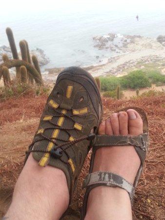 Playa Canelo: Mirador