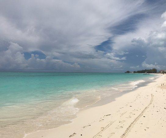 Bimini: Luna Beach