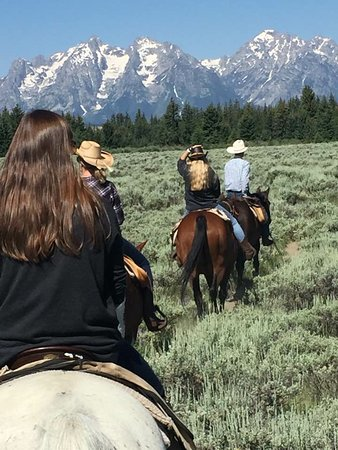 Moose Head Ranch: morning ride