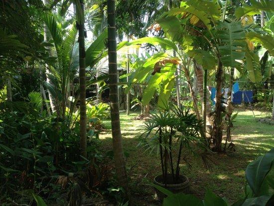Weliwatta: Garten
