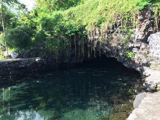 Upolu, Samoa: photo3.jpg