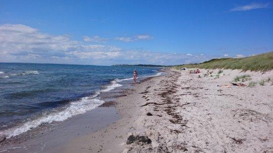 Langeland, Denmark: Ristinge strand