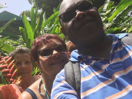 Petit-Bourg, Guadalupe: oiseau de paradis