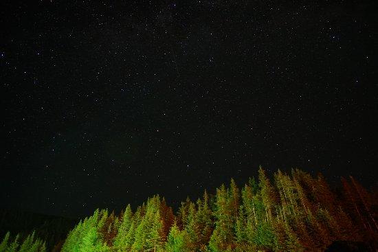 Wiltondale, Canada: DSC06158_large.jpg