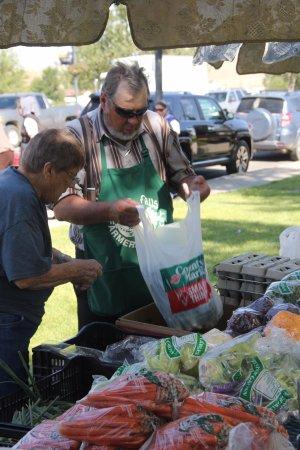 Shelby, MT: Produce