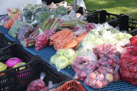 Shelby, MT: Produce