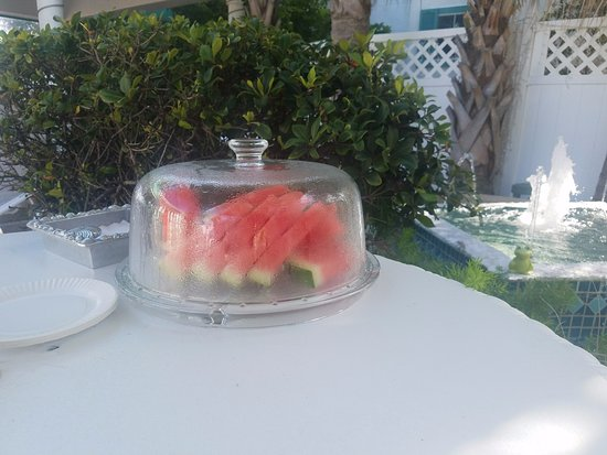 Island Cottage Oceanfront Inn & Spa - Flagler Beach: While we were outside, the owner brought us watermelon, we were spoiled there!