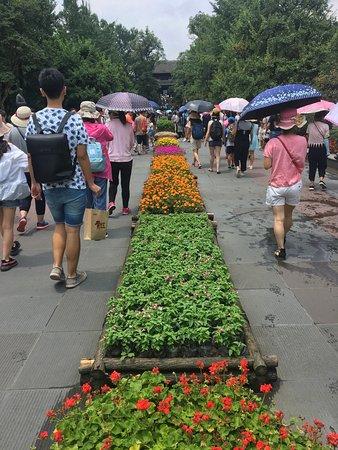 Dujiangyan, الصين: photo9.jpg