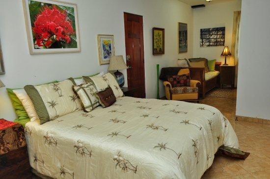 Nuevo Arenal, Costa Rica: Cas Suite