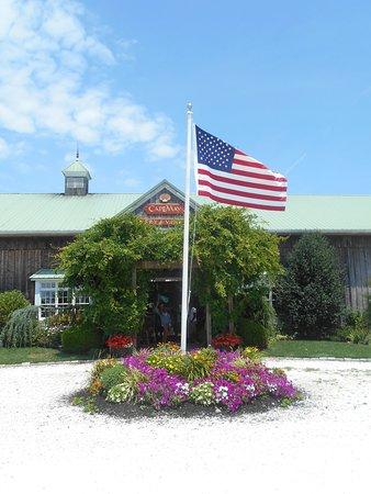 Cape May Winery: Winery Entrance