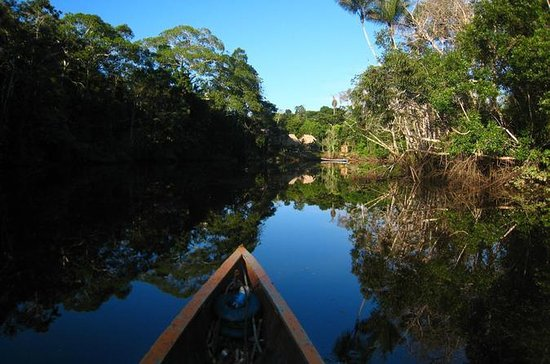 Cuyabeno Amazon Expedition 4-Day...