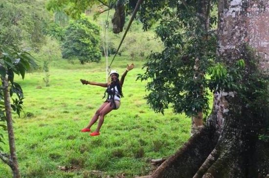 Monkey Jungle och Zipline Adventure ...