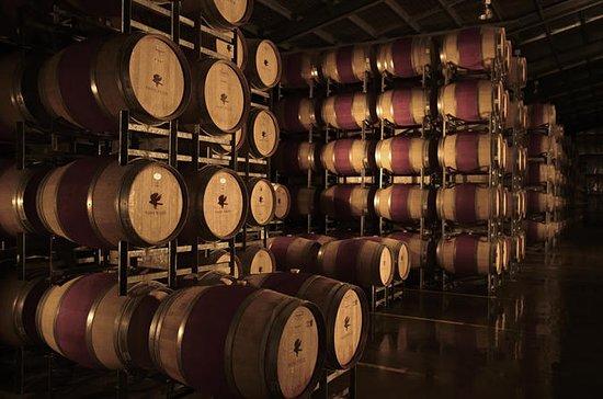 Vasse Felix: Behind-the-Scenes Winery...