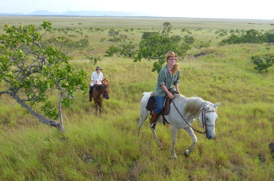 Reiten in Lethem Savanna