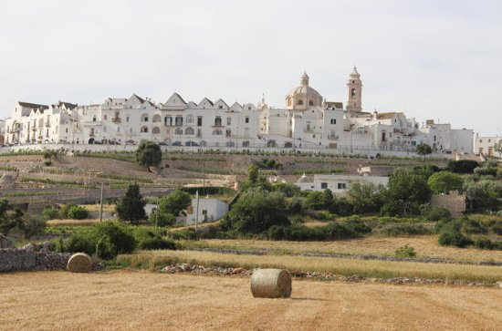 Apulian Bike Tour with Wine Tasting...