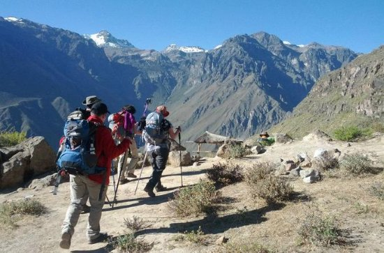 2-Day Custom Colca Canyon Trek from...
