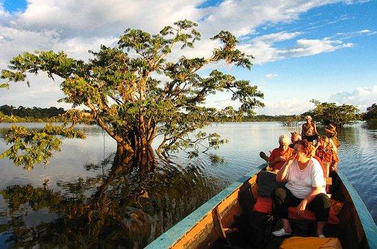 4-Day Premium Cuyabeno Tour Tapir...